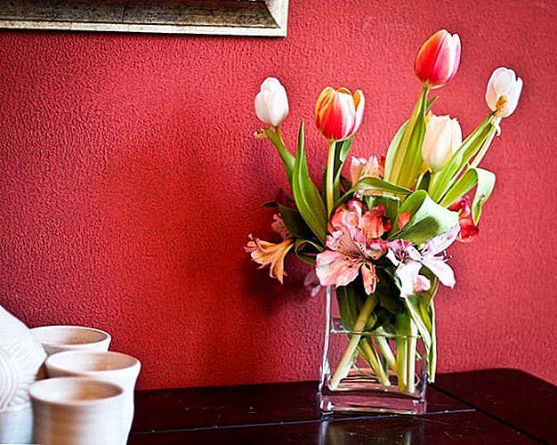 Цвијеће мајке: Како добити најбоље понуде на мамини букету
